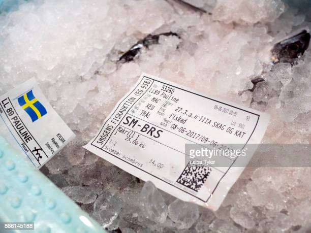 Mackerel fish on ice and ready to be shipped from the fish market in Smögen The fishing industry in Sweden is highly regulated