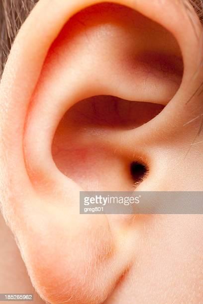 Macro ear of a child XXXL