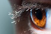 Macro human brown eye looking