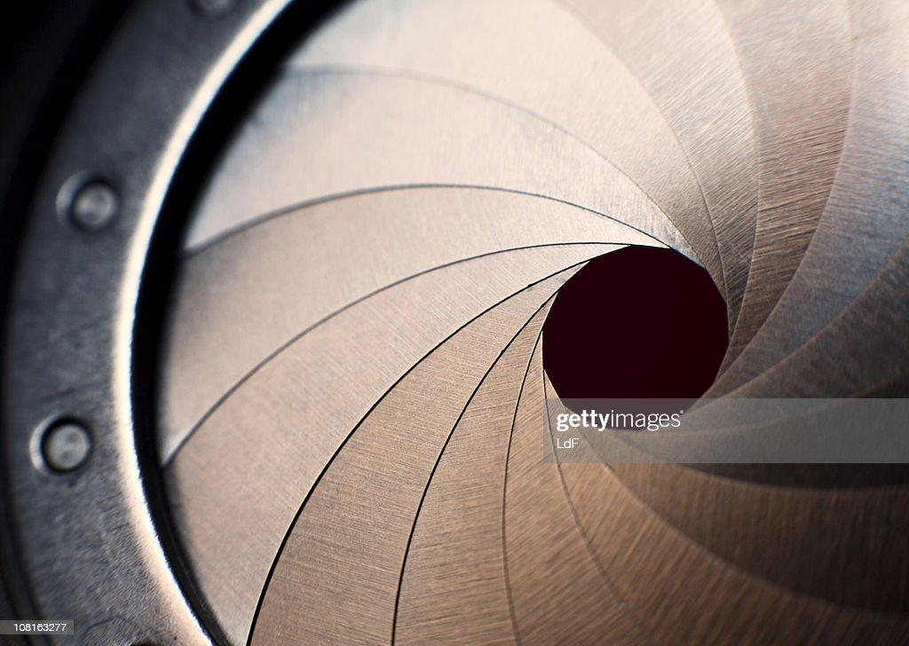 Macro of an iris : Stock Photo