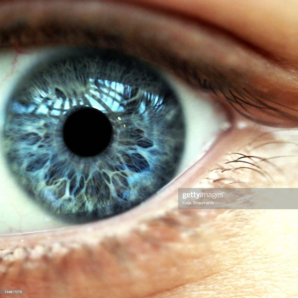 Macro of blue female eye : Stock Photo