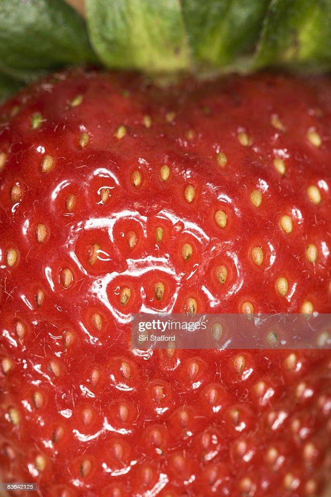Macro of strawberry  : Stock Photo