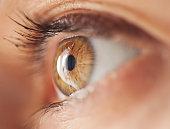 Macro shot of female greeneyes