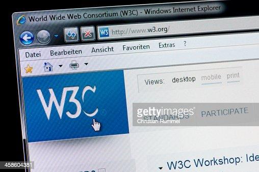 W3C - Macro shot of real monitor screen