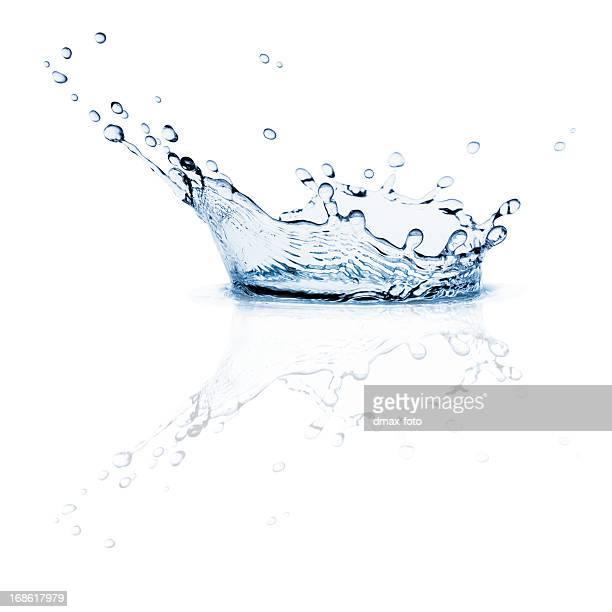 Makro Splash