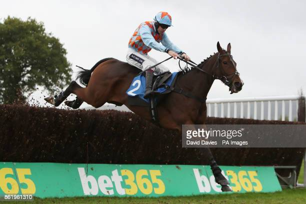 Mad Jack Mytton ridden by Aidan Coleman in the Vera Davies Memorial Chase at Ludlow Racecourse