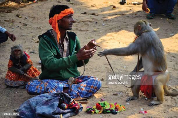 Pushkar, Rajasthan, India - November 13, 2016: Madari or Roadside Entertainer With Dancing Monkey