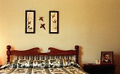 Made bed with pictures of birds on wall
