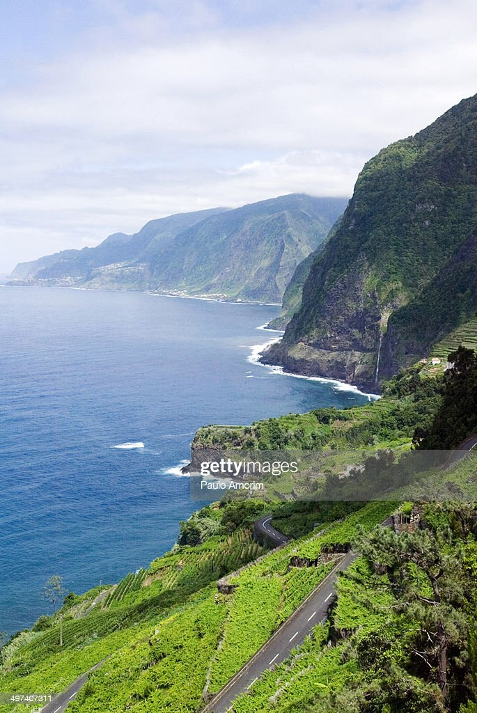 Madeira Island : Foto de stock