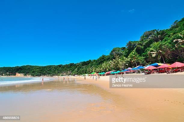 Madeiro beach Pipa