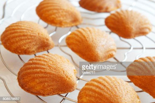 Madeleine : Stock Photo