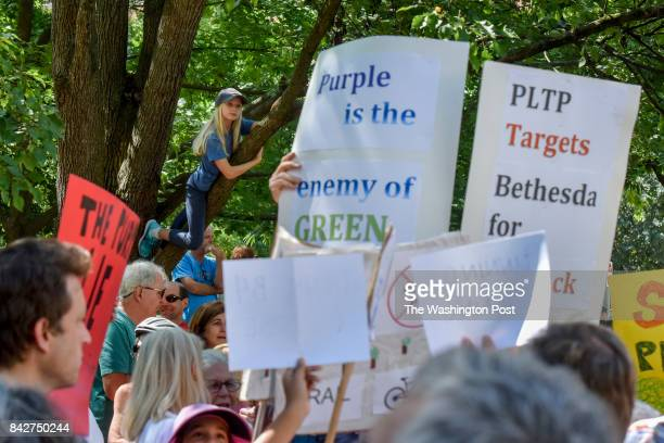 Madeleine Sharpe gets a treelimbview as demonstrators gather in Elm Street Park to protest the closing of the Capital Crescent Trail between Bethesda...