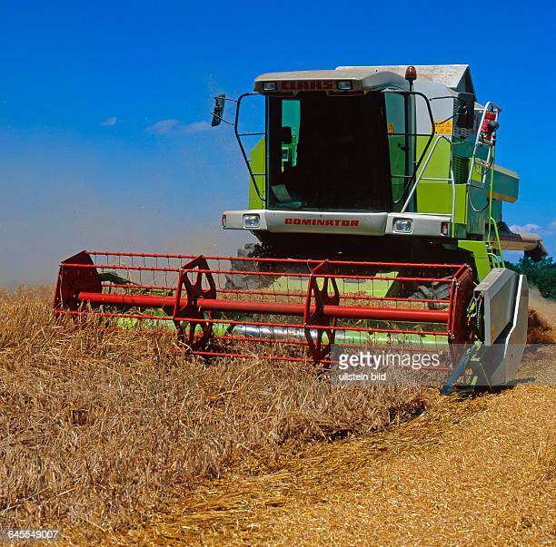 Maehdrescher bei der Getreideernte im Gerstenfeld