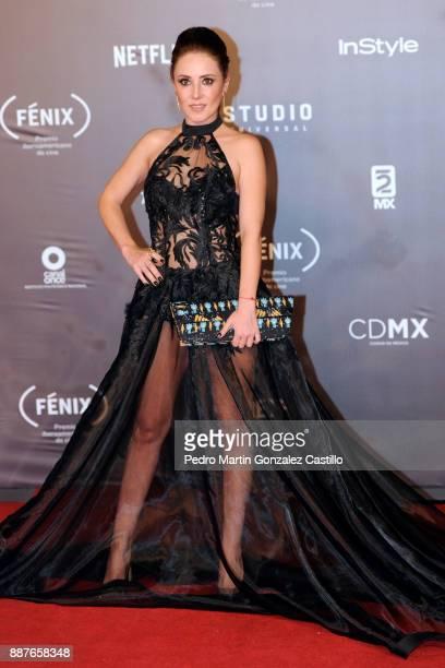 Magali Boyccelle poses during Fenix Iberoamerican Film Awards 2017 at Teatro de La Ciudad on December 06 2017 in Mexico City Mexico