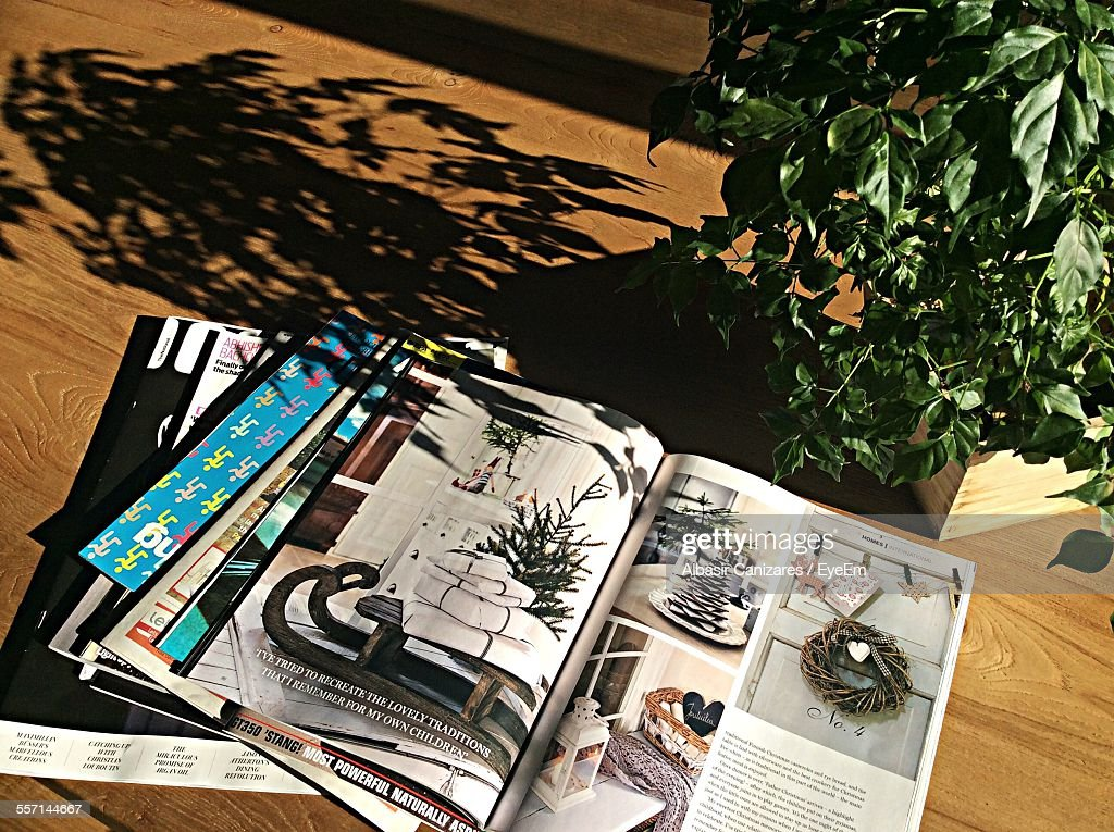 Magazines And Potted Plant On Table