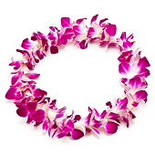 Magenta and white lei flower garland isolated on white