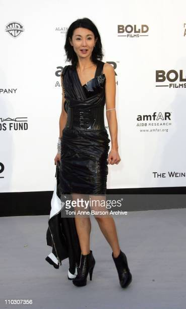 Maggie Cheung at amfAR's Cinema Against AIDS event presented by Bold Films the M*A*C AIDS Fund and The Weinstein Company to benefit amfAR