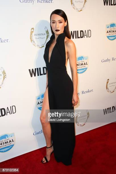 Maggie Q arrives at the Evening with WildAid at the Beverly Wilshire Four Seasons Hotel on November 11 2017 in Beverly Hills California