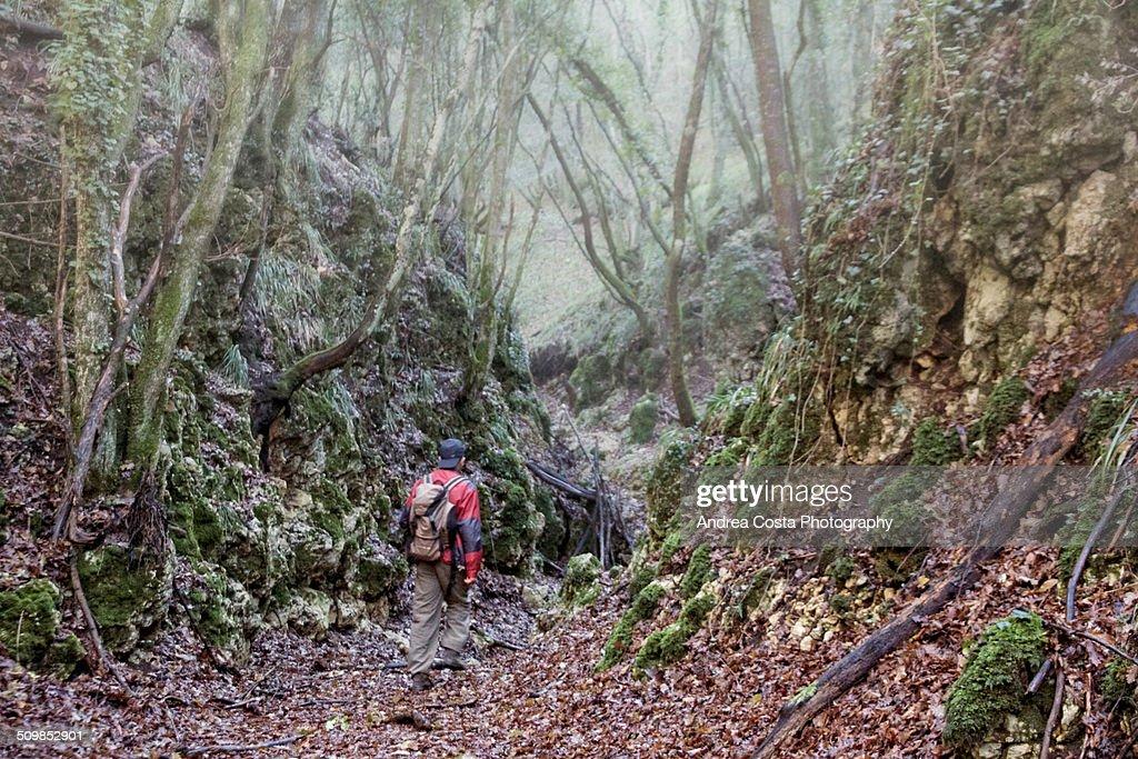 Magic trekking adventure