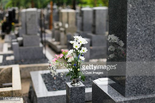 Magical Cemetery : Stock Photo