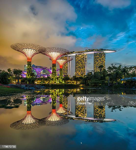 CONTENT] A magical moment as seen from the water lily pond at Gardens by the Bay Singapore The almost perfection reflection of the Super Trees in the...