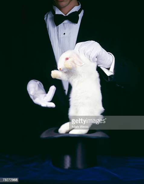 Magician pulling bunny out of a hat
