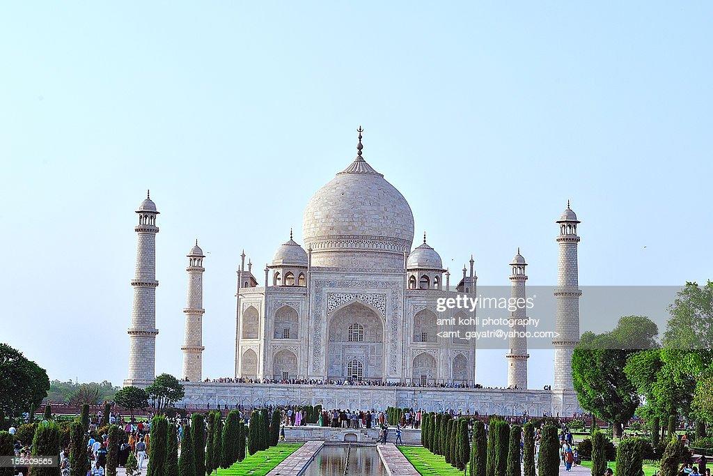 Magnificent Taj Mahal : Stock Photo