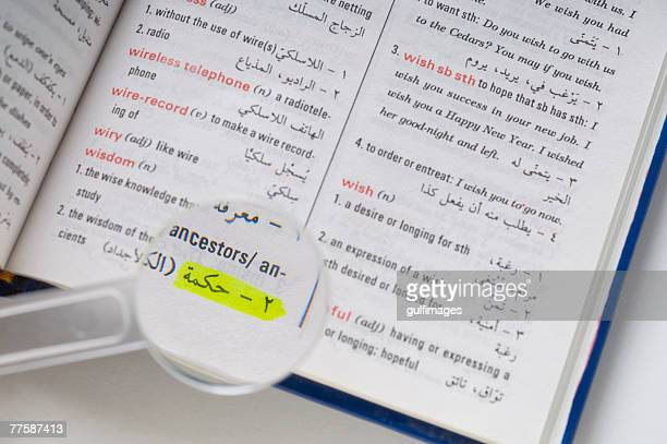 Magnifier on dictionary, close-up, elevated view
