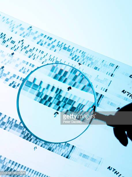 Magnifier over results of DNA analysis
