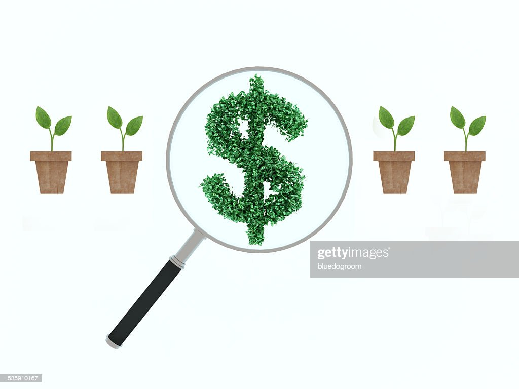 Uma lupa de ampliação vermelho Dólar Árvore de dinheiro : Foto de stock