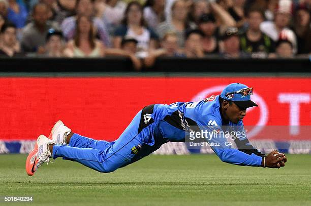 Mahela Jayawardena of the Strikers takes a catch to dismiss David Hussey of the Melbourne Stars during the Big Bash League match between the Adelaide...