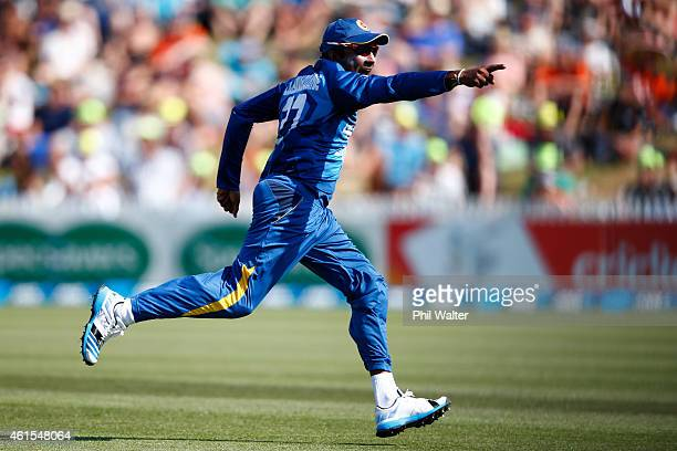 Mahela Jayawardene of Sri Lanka celebrates the run out of Nathan McCullum of New Zealand during the One Day International match between New Zealand...