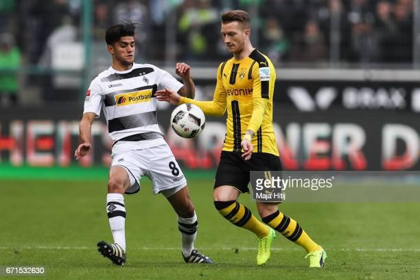 Mahmoud Dahoud of Moenchengladbach and Marco Reus of Dortmund battle for the ball during the Bundesliga match between Borussia Moenchengladbach and...