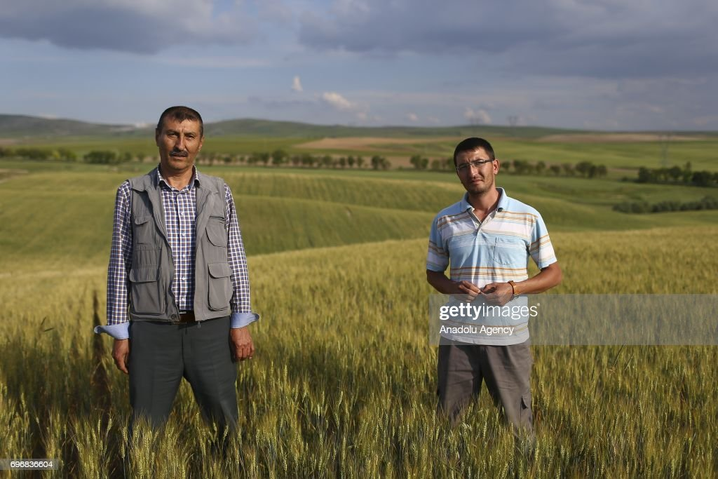 Mahmut Turkoglu (52), a farmer poses for a photo with his 30-year-old agricultural engineer son Caglar Turkoglu, who had chosen the same field of profession with his father following his lead, in Ankara, Turkey on June 16, 2017. Fathers, sometimes shape the future of their children directing their career and profession choices.