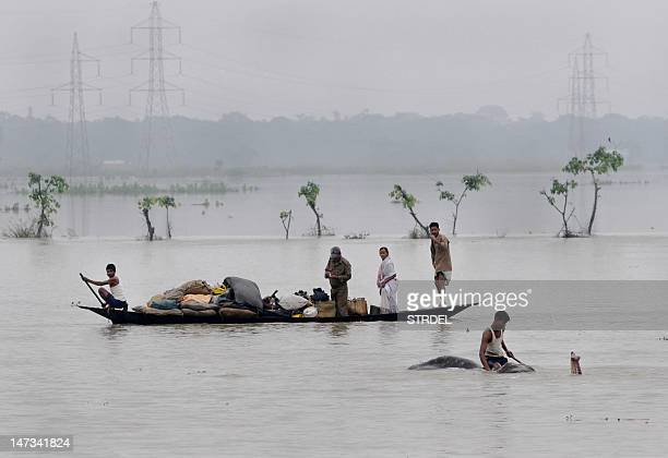 A mahout moves an elephant to higher ground as villagers padddle with their belongings through flood waters in the Pobitora Wildlife Sanctuary some...