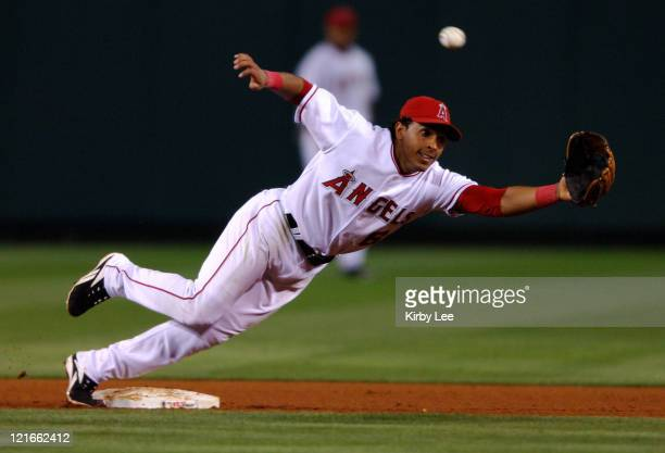 Maicer Izturis stretches for a throw to second base during 43 loss to the Kansas City Royals at Angel Stadium in Anaheim Calif on Wednesday June 14...