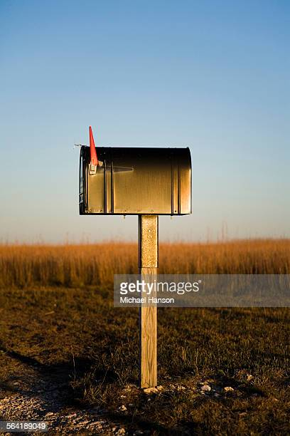 A mailbox stands alone in a Kansas corn field as the sun sets beyond the horizon.