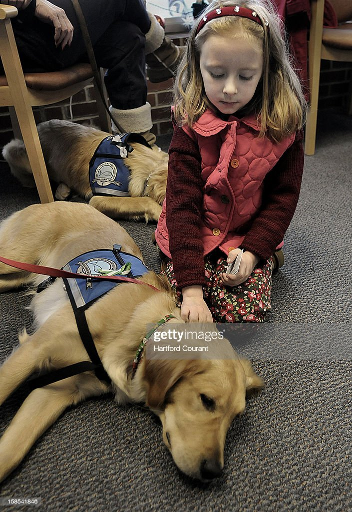 Maili Pieragostini, 6, of Newtown, Connecticut, stopped in to Excel Tutoring to visit with a pair of comfort dogs provided by the Lutheran Church Charities from Illinois. The K-9 Comfort Dog Ministry has nine Golden Retrievers in Newtown to help comfort community residents in need. Maili is a first-grader at the Head O' Meadow Elementary School in Newtown. School was supposed to start this morning but was postponed for one day. In the foreground is Ruthie, the Golden.