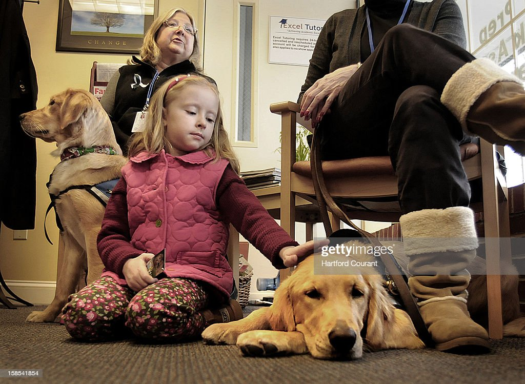 Maili Pieragostini, 6, of Newtown, Connecticut, stopped in to Excel Tutoring to visit with a pair of comfort dogs provided by the Lutheran Church Charities from Illinois. The K-9 Comfort Dog Ministry has nine Golden Retrievers in Newtown to help comfort community residents in need. Maili is a first-grader at the Head O' Meadow Elementary School in Newtown. School was supposed to start this morning but was postponed for one day. At left is Dona Martin, K-9 coordinator for for the K-9 comfort Dog Ministry, and at right, Barb Granado of the ministry. In the foreground is Ruthie, the Golden.