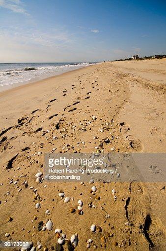 East hampton photos et images de collection getty images for Hamptons long island
