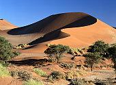Main Dune at Sossusvlei