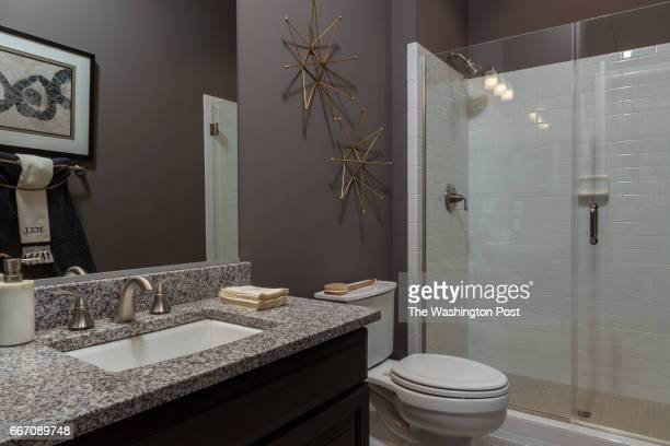 Main level Hall Bath in the Tradition Model at Regency at Creekside on March 28 2017 in Gainesville Virginia