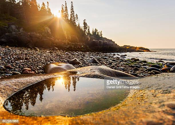 USA, Maine, Acadia National Park, Rocks and pebbles on beach at sunrise