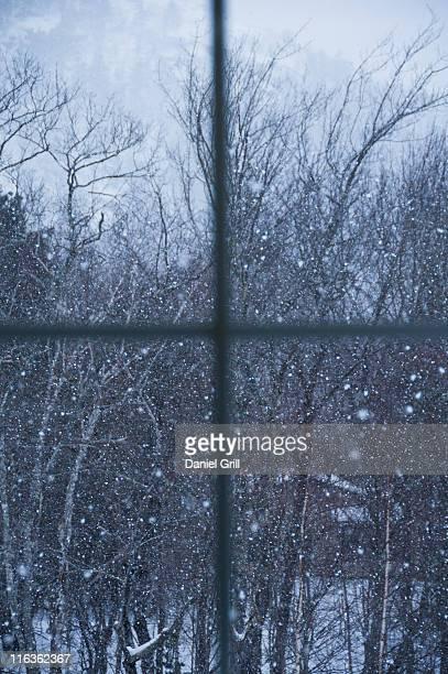 USA, Maine, Camden, window overlooking snowy forest
