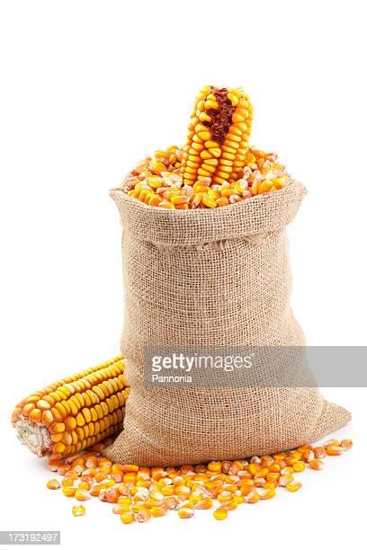 Maize in Burlap Sack