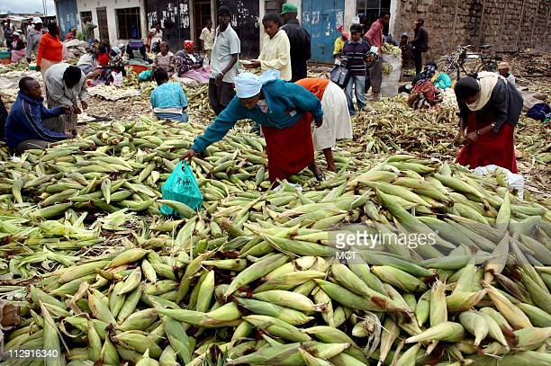 Maize is sold in a large vegetable market where farmers bring their produce for sale to local middlemen and vegetable distributors Farmers complain...