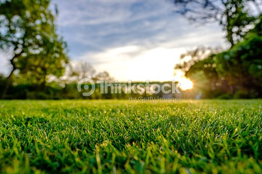 Majestic sunset seen in late spring, showing a recently cut and well maintained large lawn in a rural location. : Stock Photo