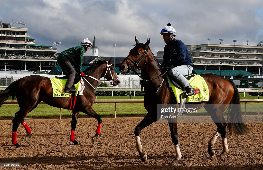 Majesto and My Man Sam train on the track for the Kentucky Derby at Churchill Downs on May 05, 2016 in Louisville, Kentucky.