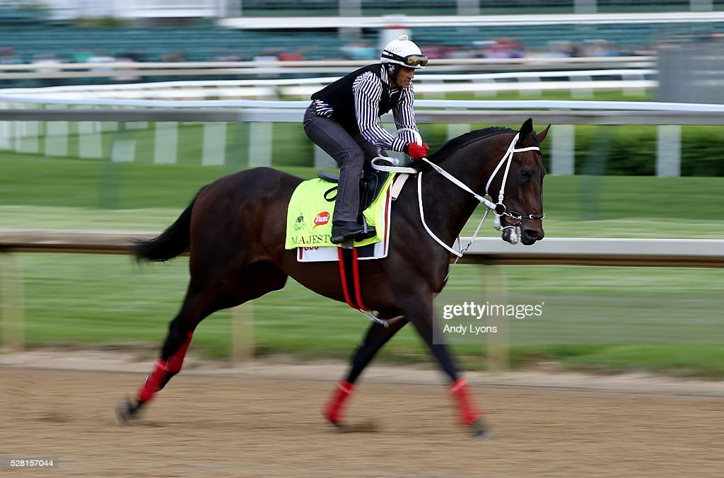 Majesto runs on the track during the morning training for the 2016 Kentucky Derby at Churchill Downs on May 04, 2016 in Louisville, Kentucky.