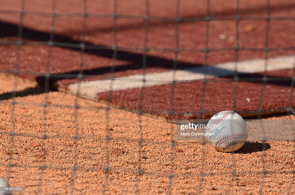 A Major League baseball sits in the batting cage during the Detroit Tigers Spring Training workouts at the TigerTown Facility on February 17, 2013 in Lakeland, Florida.